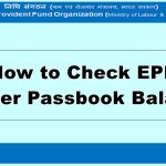 How to Check EPF Member Passbook Balance?